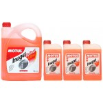 ZESTAW DO CHŁODNICY KONCENTRAT 50/50 MOTUL INUGEL OPTIMAL ULTRA 8L
